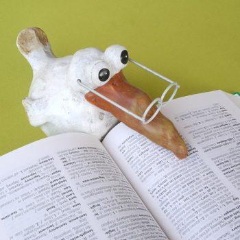 Vogel-Figur mit Lesebrille über einem Wörterbuch