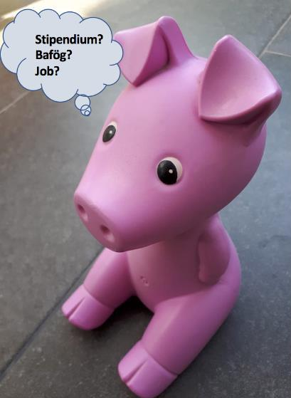 """Spielzeugschwein mit Denkblase """"Stipendium? Bafög? Job?"""""""