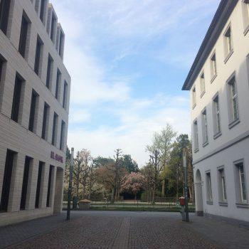 Blick zwischen zwei Häusern auf einen Park