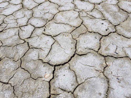 trockener Erdboden mit tiefen Rissen